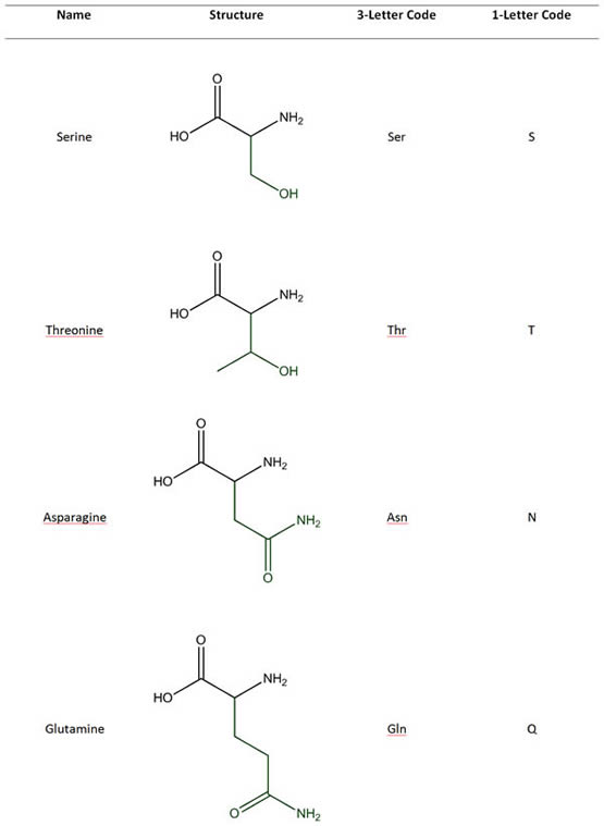 Amino Acids with Uncharged Polar Side Chains