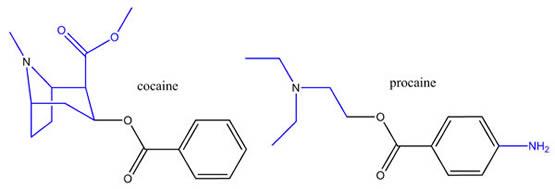 Cocaine & Procaine