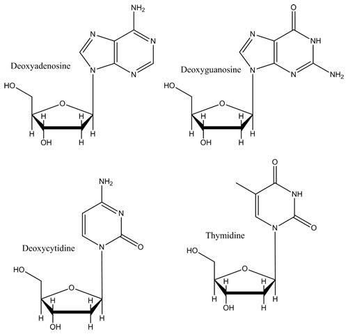 Deoxyribonucleosides
