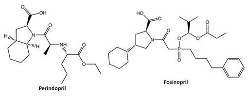 Perindopril-Fosinopril