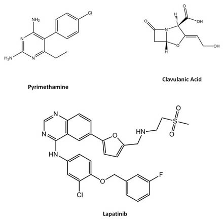 Pyrimethamine-Clavulanic Acid-Lapatinib