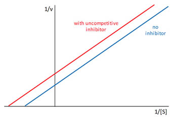 Uncompetitive Inhibitor Graph