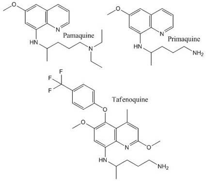 8-aminoquinolines