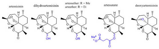 Artemisinin & Derivatives