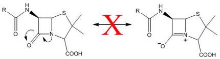β-Lactam Ring Reaction