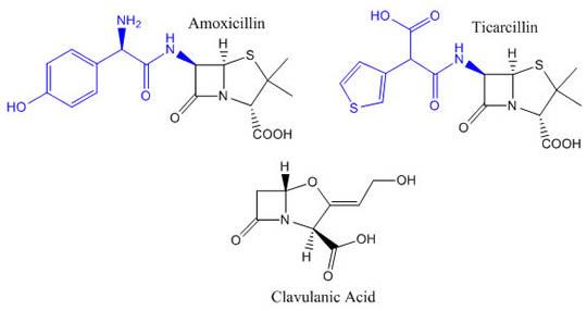 β-lactamases Inhibitors