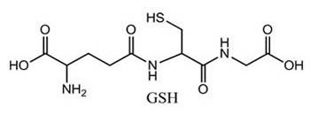 Glutathione (GSH)