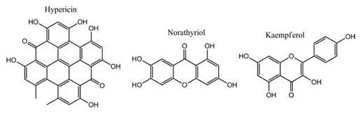Hypericin-Norathyriol-Kaempferol
