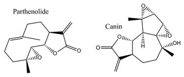 Parthenolide-Canin