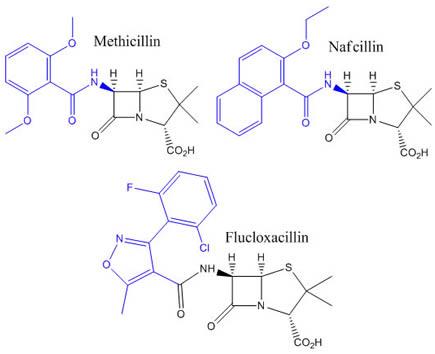 Penicillin Bulky Group