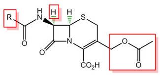 Penicillin Modifications