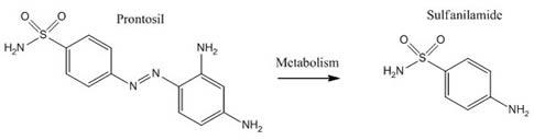 Prontosil-Sulfanilamide