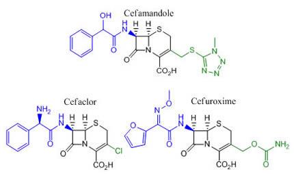 Second Generation Cephalosporins