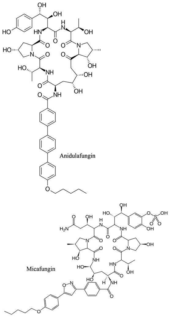 Anidulafungin & Micafungin