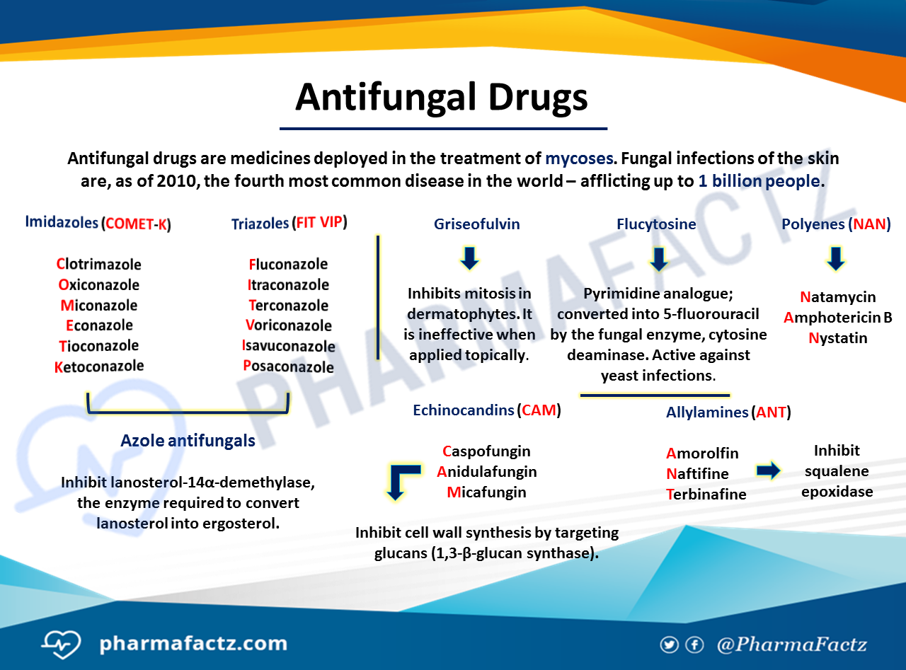 Pharmacology of Antifungal Drugs