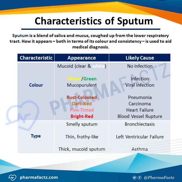 Characteristics of Sputum