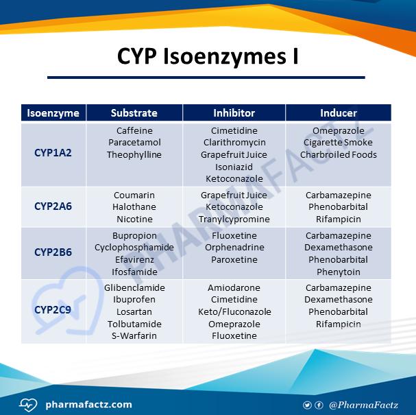 CYP Isoenzymes I