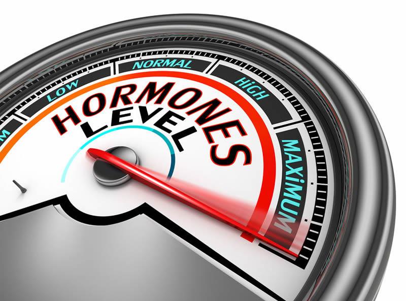 Endocrine & Metabolism