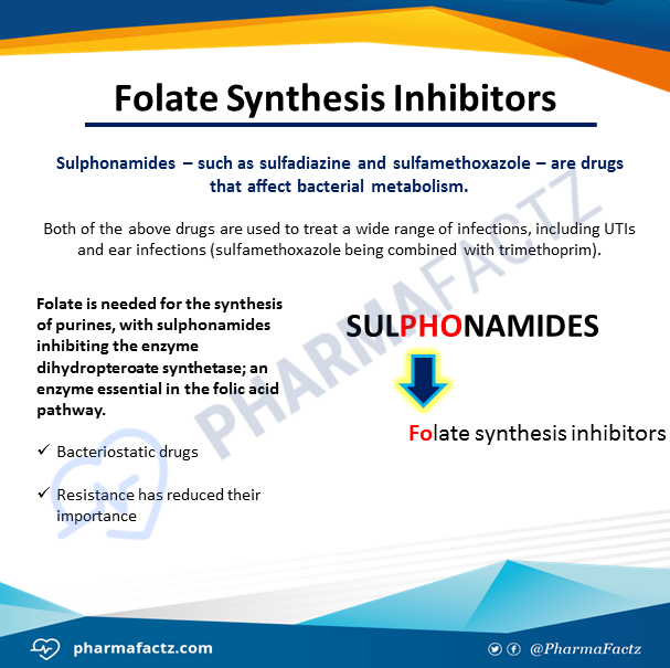 Folate Synthesis Inhibitors