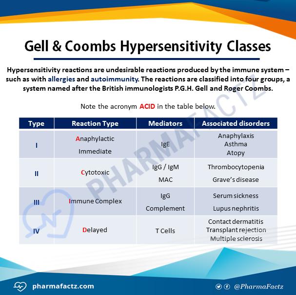 Gell & Coombs Hypersensitivity Classes