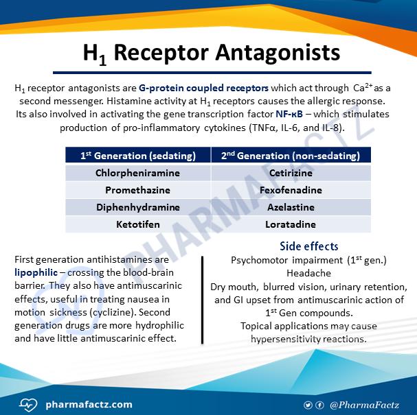 H1 Receptor Antagonists
