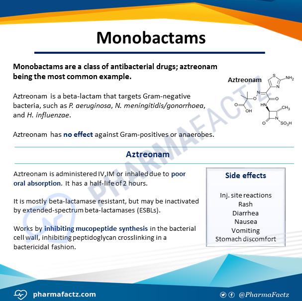Monobactams