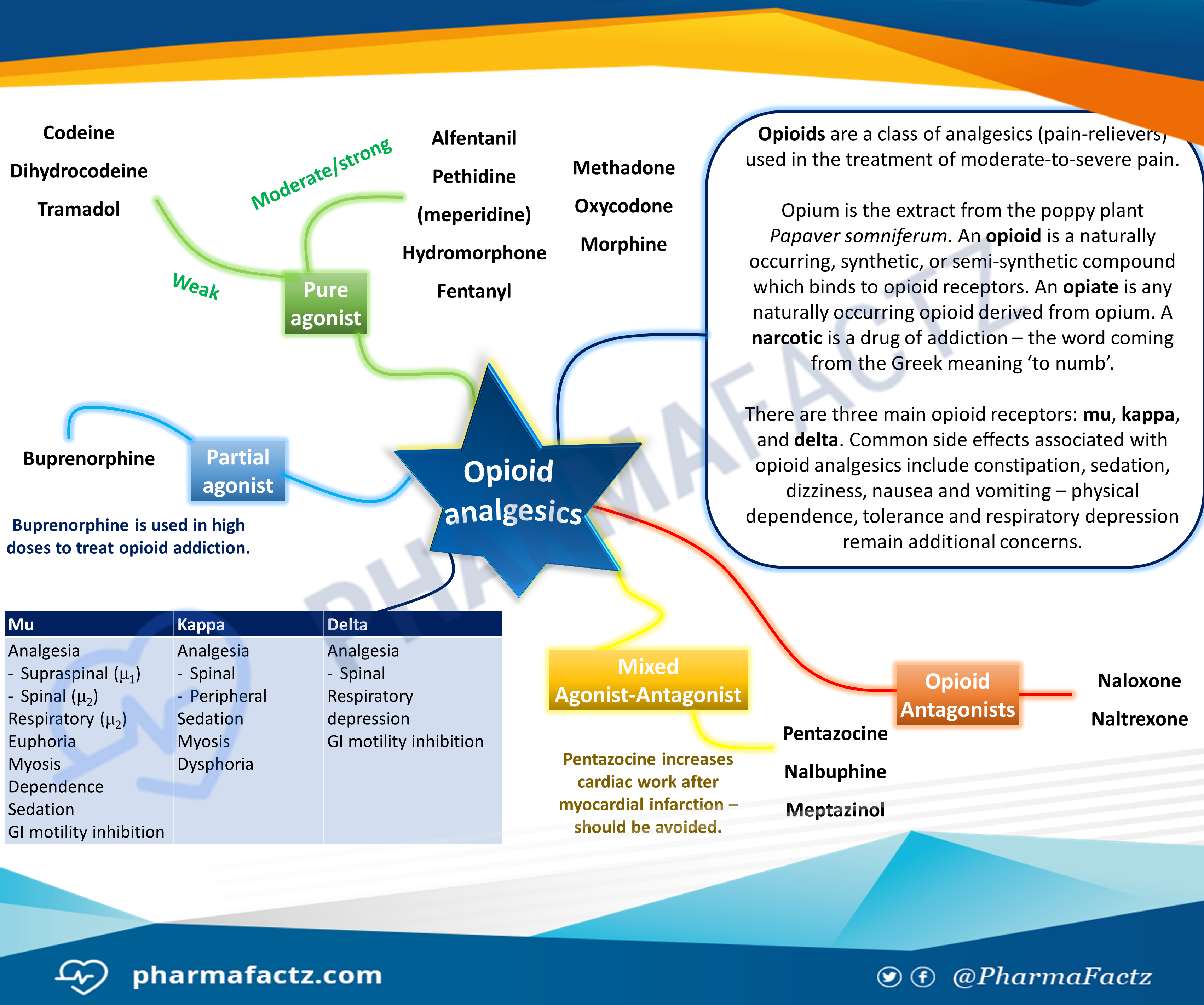 Opioid Analgesics Mindmap