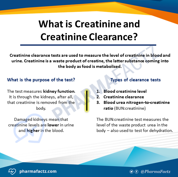 What is Creatinine & Creatinine Clearance?