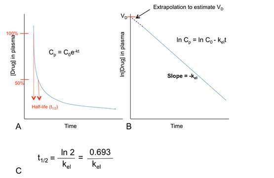 Figure 3: Estimation of the elimination constant