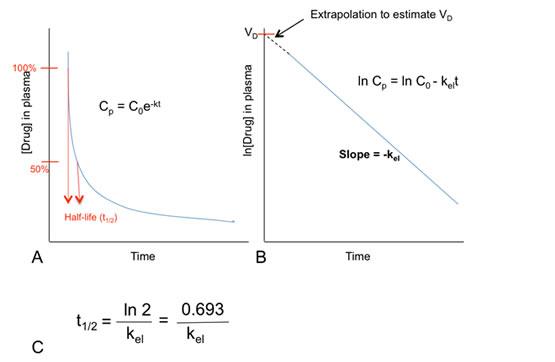 Figure 3: Estimation of the elimination constant