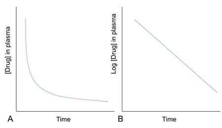 Figure 1: Exponential drug elimination