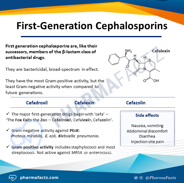 First-Generation Cephalosporins