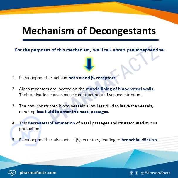 Mechanism of Decongestants
