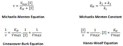 Pyrimethamine-Clavulanic Acid-Lapatinib