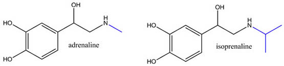 Cocaine Procaine