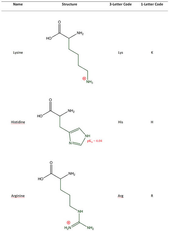 Amino Acids with Cationic Side Chains