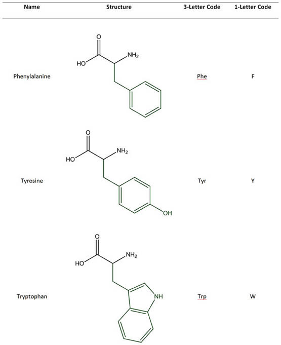 Amino Acids with Hydrophobic & Aromatic Side Chains