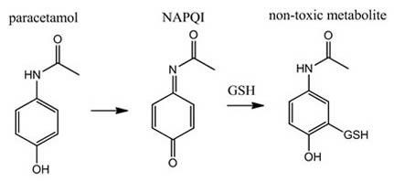 Paracetamol-NAPQI