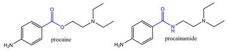 Procaine & Procainamide