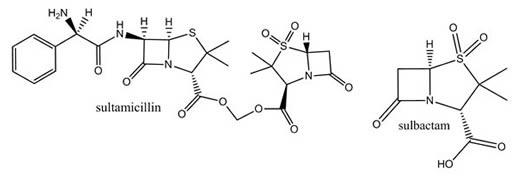 Sultamicillin & Sulbactam