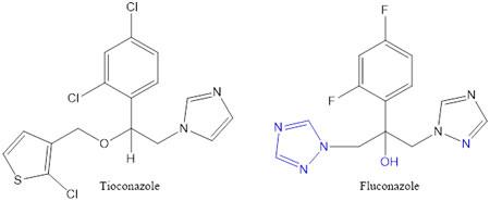 Tioconazole & Fluconazole