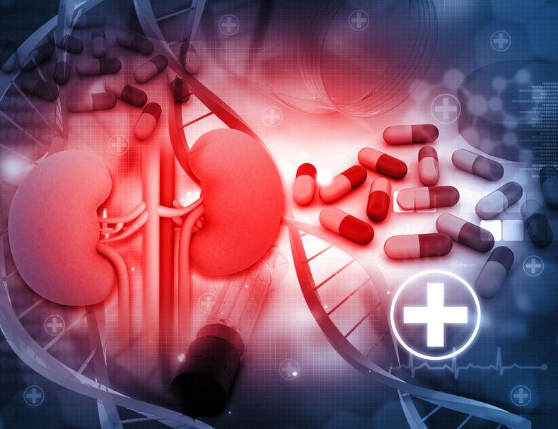 loop diuretics pharmacology